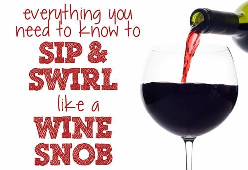 Wine-tasting-tips-for-novic
