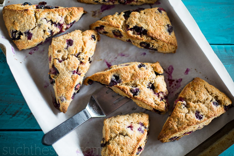 Blueberry breakfast scones | Such the Spot