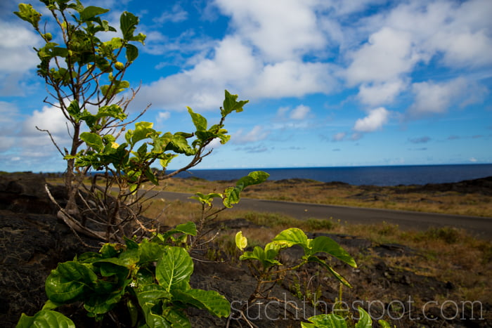 Hawaii: our Big Island adventure | Such the Spot