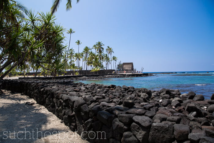 Our Hawaiian Adventure | Such the Spot