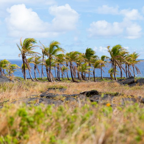 Why you should visit the Big Island