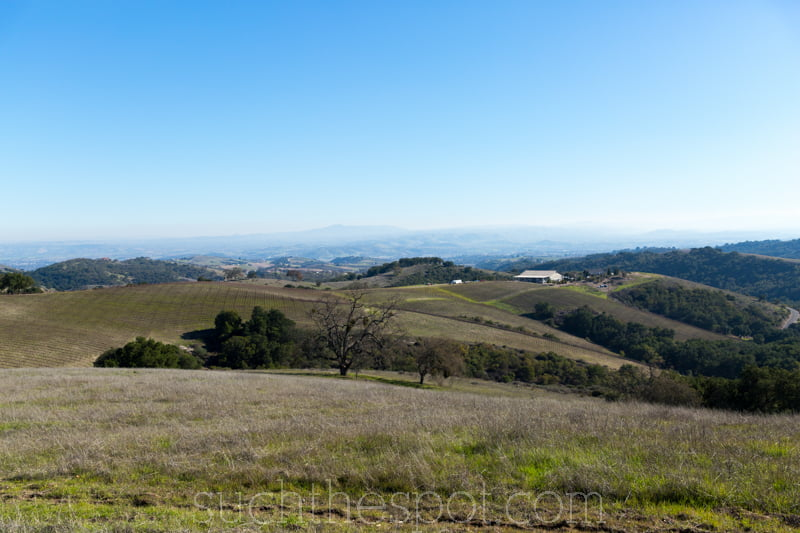 Two unique ways to tour the vineyards of Paso Robles | Such the Spot