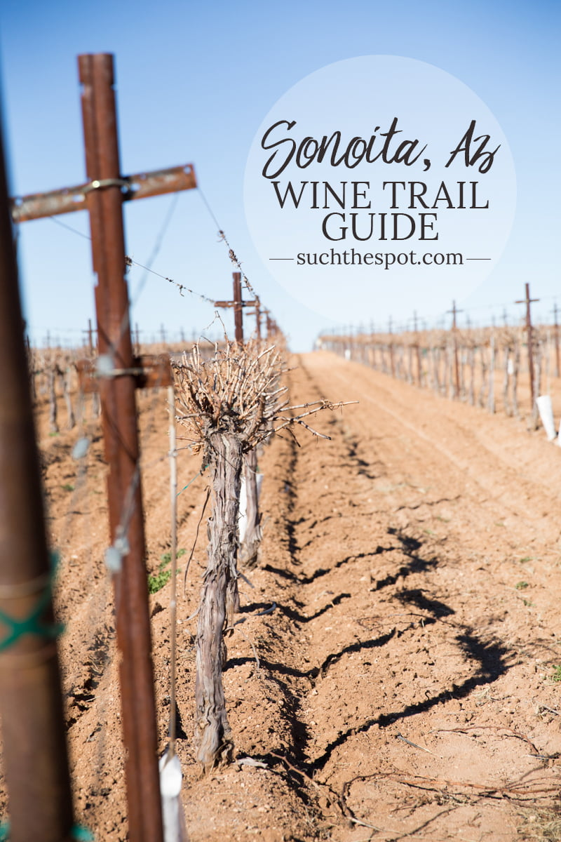Within an hour of Tucson, Arizona, there lies a trail of wine tasting rooms that produce award-winning wines. This travel guide shares tips for visiting the best wineries in Arizona.