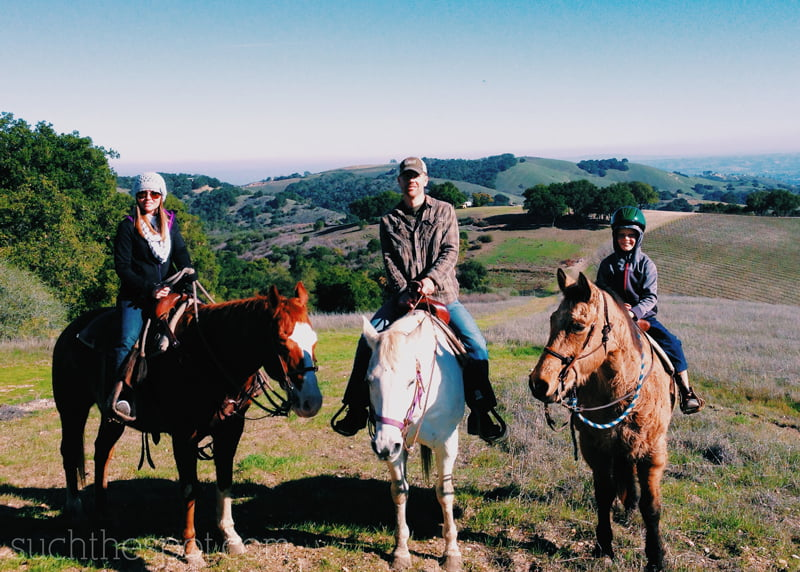 Best bets for dining, accommodations & activities in Paso Robles