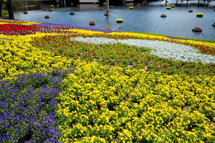 A day at the Epcot International Flower & Garden Festival