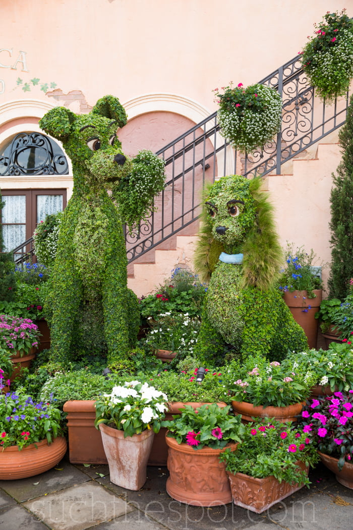 A day at the Epcot International Flower & Garden Festival
