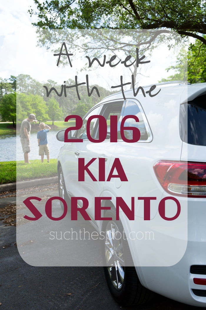 Confessions of a car enthusiast's daughter