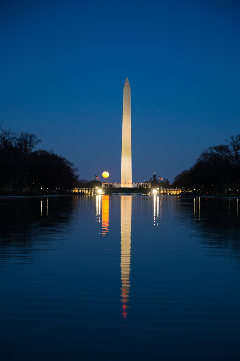 Must-Do Activities in Washington DC