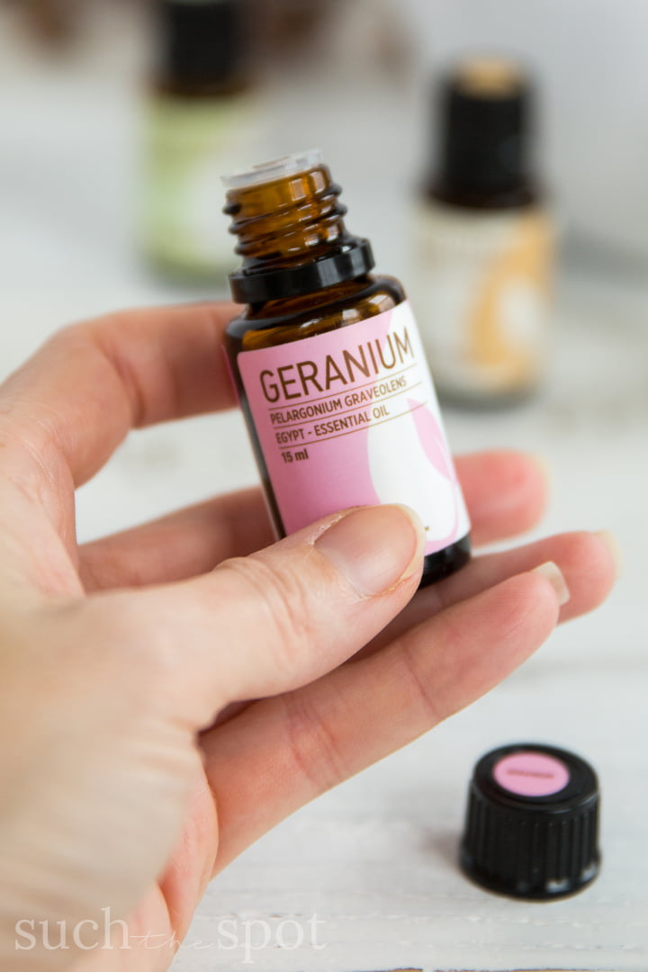 These five favorite winter essential oils have so many different uses. From cleaning, to skincare to wellness, these oils deliver great value and versatility and are definitely worth adding to your essential oil collection.