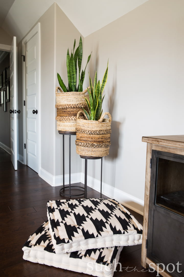 Snake plants in textured boho baskets