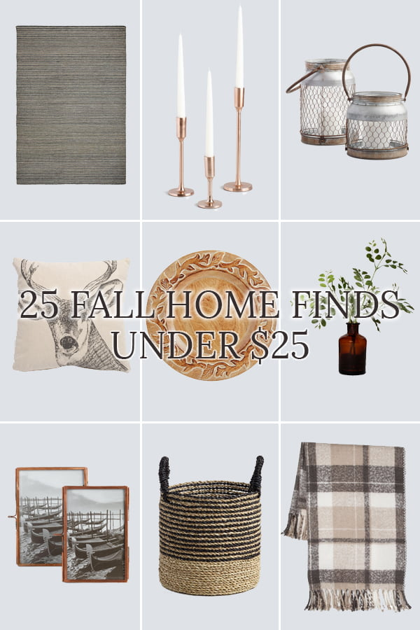 cute and inexpensive fall home accesories